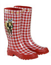 Rubber Boots Stock Image - 20892881