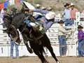 Rodeo Bucking Bronc Rider Royalty Free Stock Image - 20951146