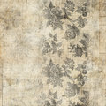 Grungy Antique Vintage Floral Background Stock Photos - 20987213