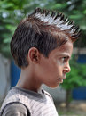 Hair Spikes Royalty Free Stock Image - 21022976