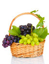 Ripe Red Grapes In Basket Royalty Free Stock Photography - 21041367