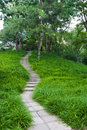 Tree-lined Path Stock Images - 21083724