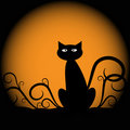 Halloween Cat Stock Images - 21240494