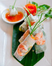 Spring Rolls Royalty Free Stock Photo - 21278515