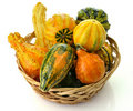 Gourds Royalty Free Stock Photos - 21290508