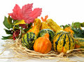 Gourds Royalty Free Stock Image - 21290516