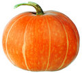 Ripe Pumpkin Isolated Royalty Free Stock Images - 21348009