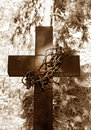 Cross And Thorns Royalty Free Stock Photos - 21393258