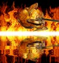 Chicken On Grill Stock Images - 21450524