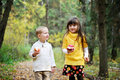 Little Boy And Little Girl Eating Apples In Forest Stock Photography - 21533502
