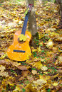 Music Guitar In Autumn Leaves Forest Background Royalty Free Stock Photos - 21536008
