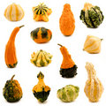 Gourds Royalty Free Stock Images - 21609999