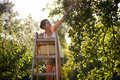 Young Woman Up On A Ladder Royalty Free Stock Images - 21628599