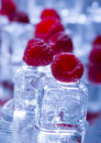 Cold Raspberries Stock Photo - 2174620