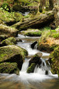 Cascade On The River Stock Photography - 21700662
