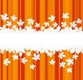 Colorful Autumnal Leaves Background Royalty Free Stock Photos - 21717298