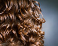Curly Brown Hair Stock Photography - 21779402
