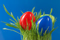 Easter Eggs Royalty Free Stock Photo - 2181235