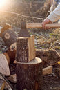 Chopping Wood Royalty Free Stock Photography - 21824557