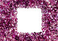 Square Frame Made From Many Small Ruby Diamonds Royalty Free Stock Images - 21934299