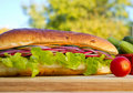 Vegetarian Sandwich Royalty Free Stock Image - 21963976