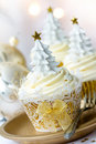 Christmas Cupcakes Stock Images - 21986144