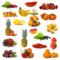 Big Collection Of Fruits Stock Photo - 21991820