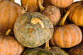 Pumpkins Royalty Free Stock Images - 22000989