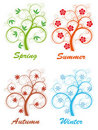 Tree Four Seasons Royalty Free Stock Image - 22028996