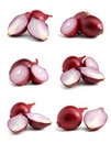 Onions Collection Royalty Free Stock Images - 22102499