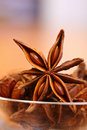 Star Anise Royalty Free Stock Photo - 22116285