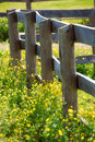 Summer Meadow Stock Photography - 2223722