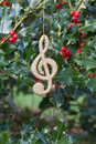 Holiday Decoration On Holly Sprigs Royalty Free Stock Photo - 22248465