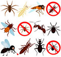 Anti Bugs (mosquito, Termite, Ant, Etc) Stock Photos - 22324373