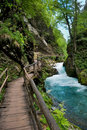 Vintgar Gorge And Wood Path In Slovenia Stock Photo - 22344530