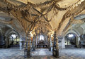 Interior Of The Sedlec Ossuary, Czech Republic Stock Image - 22384211