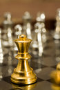 Chess (the King) Stock Images - 22456784