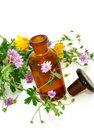 Bottle Of Essential Oil And Flowers Isolated On Wh Royalty Free Stock Photography - 22469847
