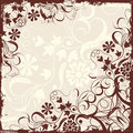 Grunge Floral Frame, Vector Stock Photography - 2255512