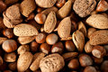 Nuts Stock Image - 22581661
