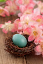Real Robins Egg With Pink Spring Flowers Stock Photo - 22650390