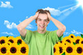 The Man In A Garden. Sunflower Royalty Free Stock Photo - 22748165