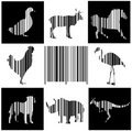Animals As Bar Code Stock Photography - 22764412