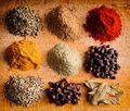 Different Spices Royalty Free Stock Photography - 22798157