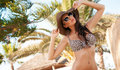 Beauty Brunette On Tropical Island Royalty Free Stock Images - 22819549