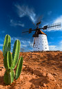 Cactus And Traditional Windmill Royalty Free Stock Photo - 22822845