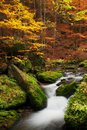 Autumn Creek Stock Image - 22826241