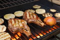 Grilled Pork Chops And Vegetables Royalty Free Stock Photos - 22831918