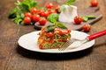 Homemade Lasegne With Ricotta Cheese And Spinach Stock Photography - 22837682
