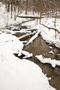 Flowing Forest Stream Water In Winter. Coast Snow Royalty Free Stock Images - 22846639